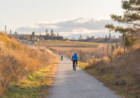 Penticton, British Columbia/Canada - November 24, 2019: people cycle and walk along the Kettle Valley Rail Trail, a popular recreation trail in the Okanagan Valley.